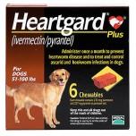 Heartgaaes large dogs.jpg