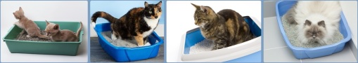cat litter boxes combined