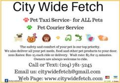 Citywidefetch 3cp